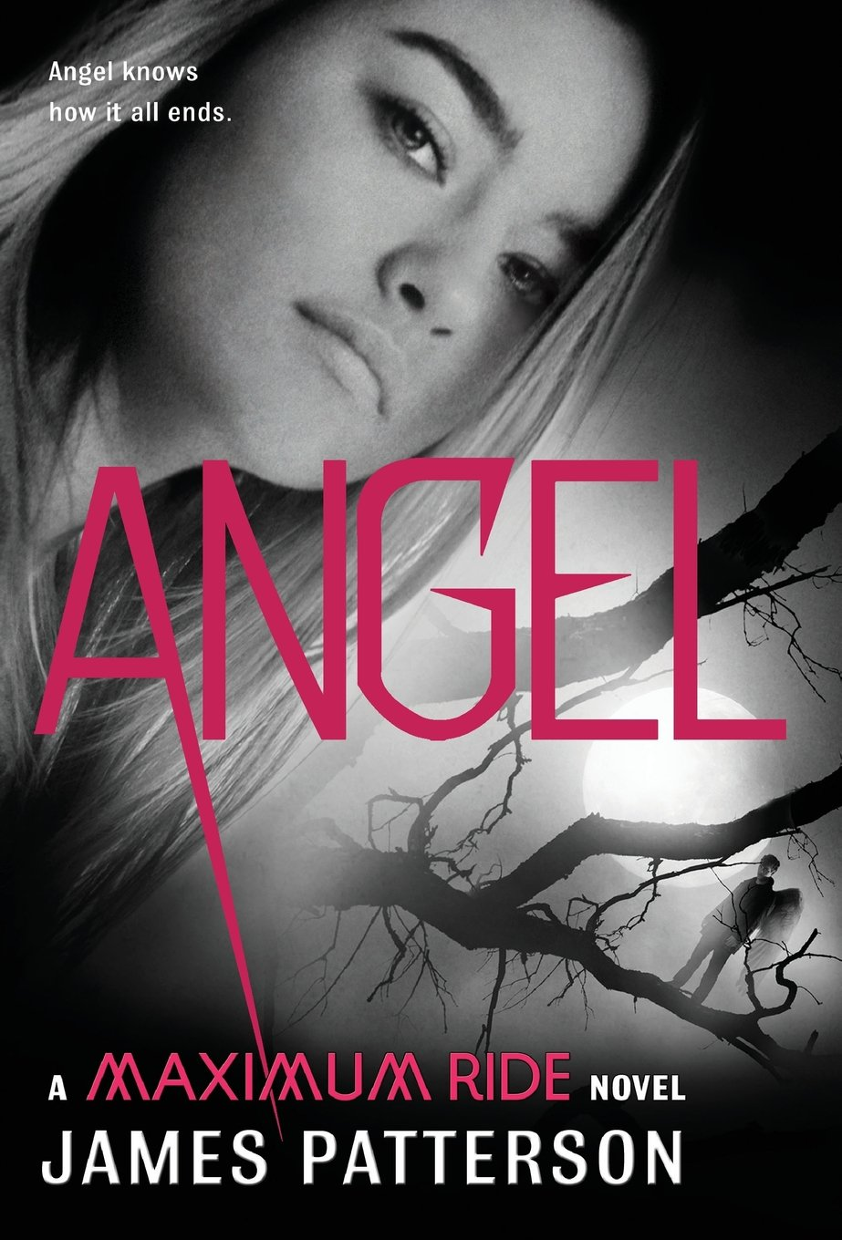 Download Angel: A Maximum Ride Novel PDF