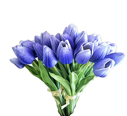 Amazon Meide Group Usa 10 Real Touch Mini Tulips Spring