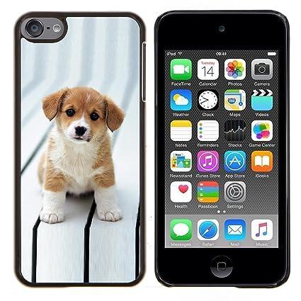 Amazon.com: STPlus perro carcasa rígida para Apple iPod ...
