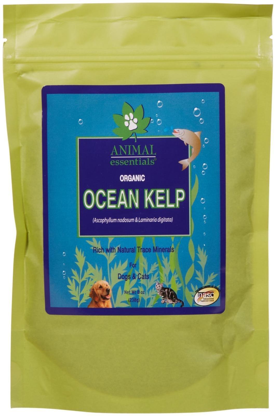 Animal Essentials Organic Ocean Kelp - 8 oz