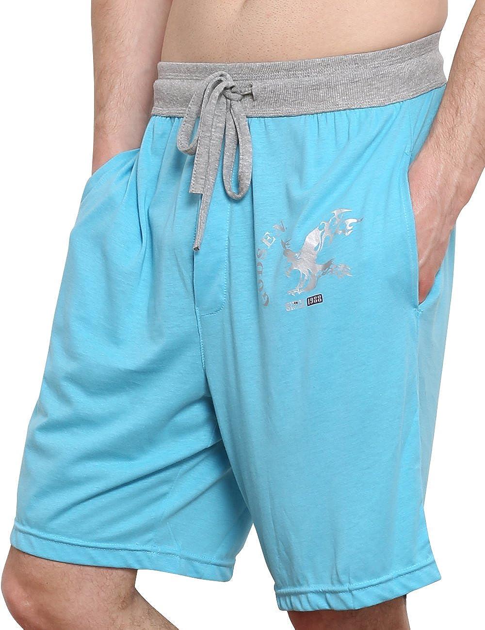 Godsen Mens Cotton Shorts Pajama Shorts Boardshort Sky Blue,S