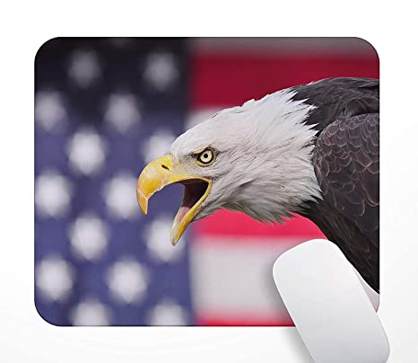 Free Personalizing! Bald Eagle Photo Mouse Pad