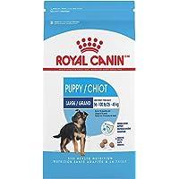 Royal Canin Croquetas Para Perros Grandes, Maxi Puppy, 2.72 Kg (El Empaque Puede Variar)