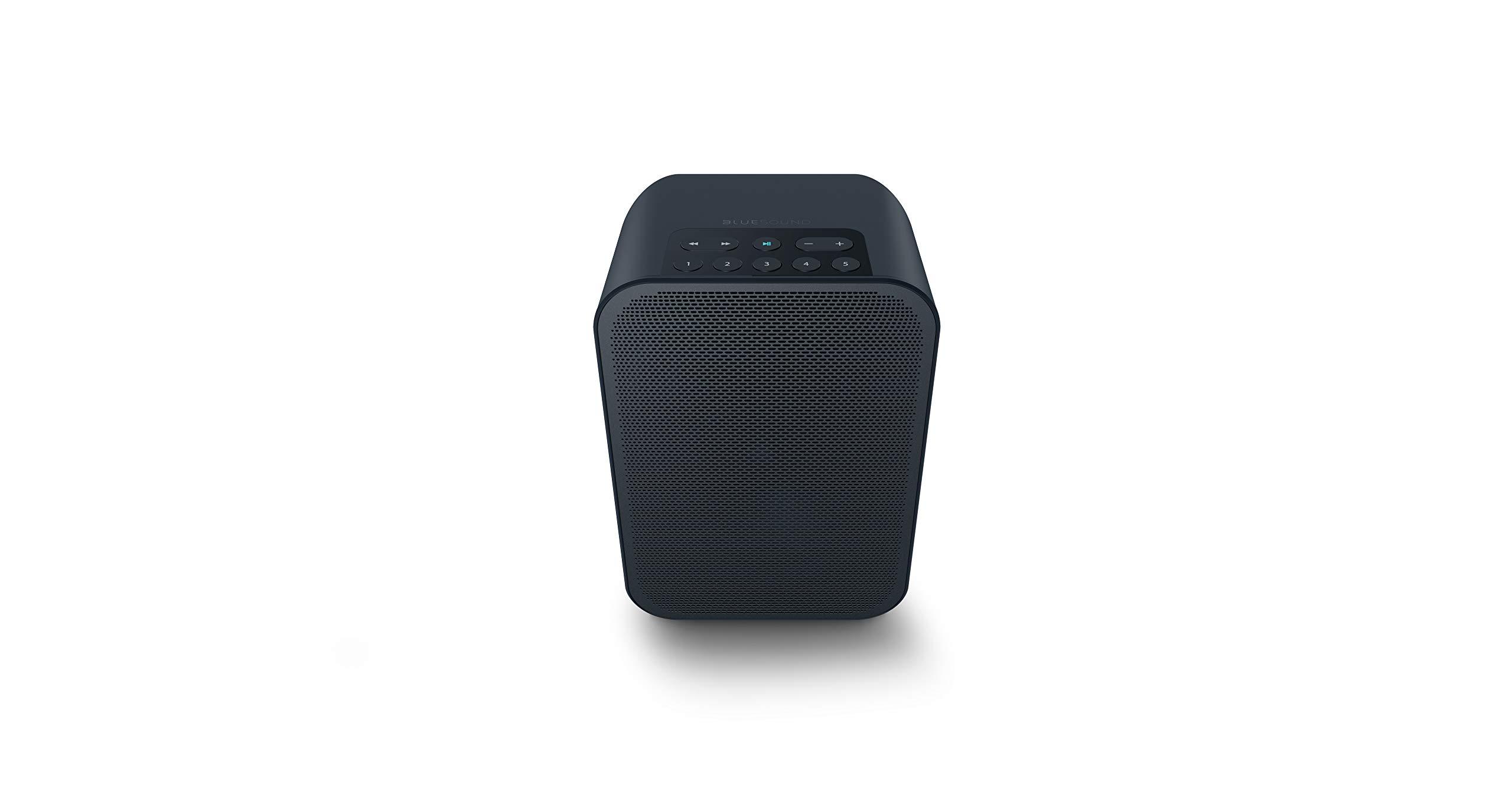 Bluesound Pulse Flex 2i Portable Wireless Multi-Room Smart Speaker with Bluetooth - Black - Works with Alexa and Siri