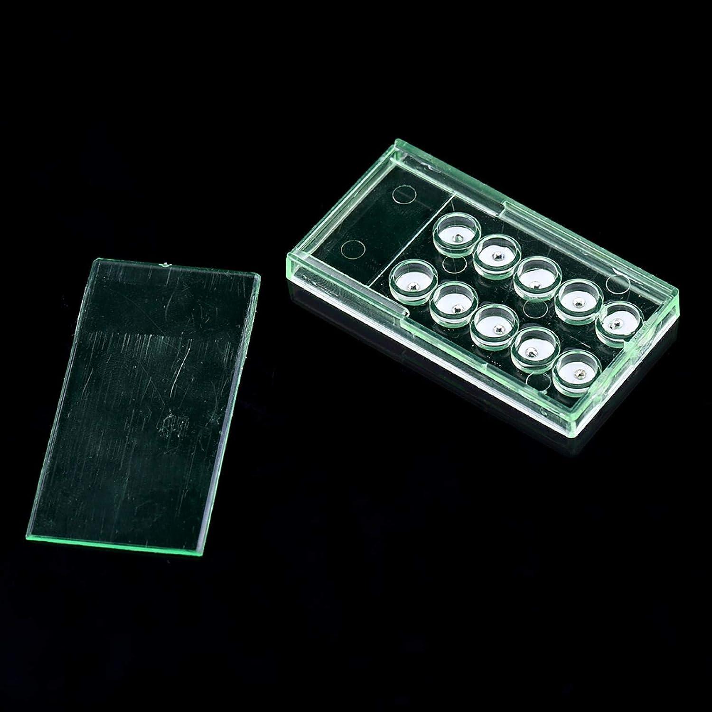 Adornos de cristal de diente de acr/ílico DIY kit de joyer/ía de diamante de diente brillante 2 mm para decoraci/ón de dientes decoraci/ón de u/ñas