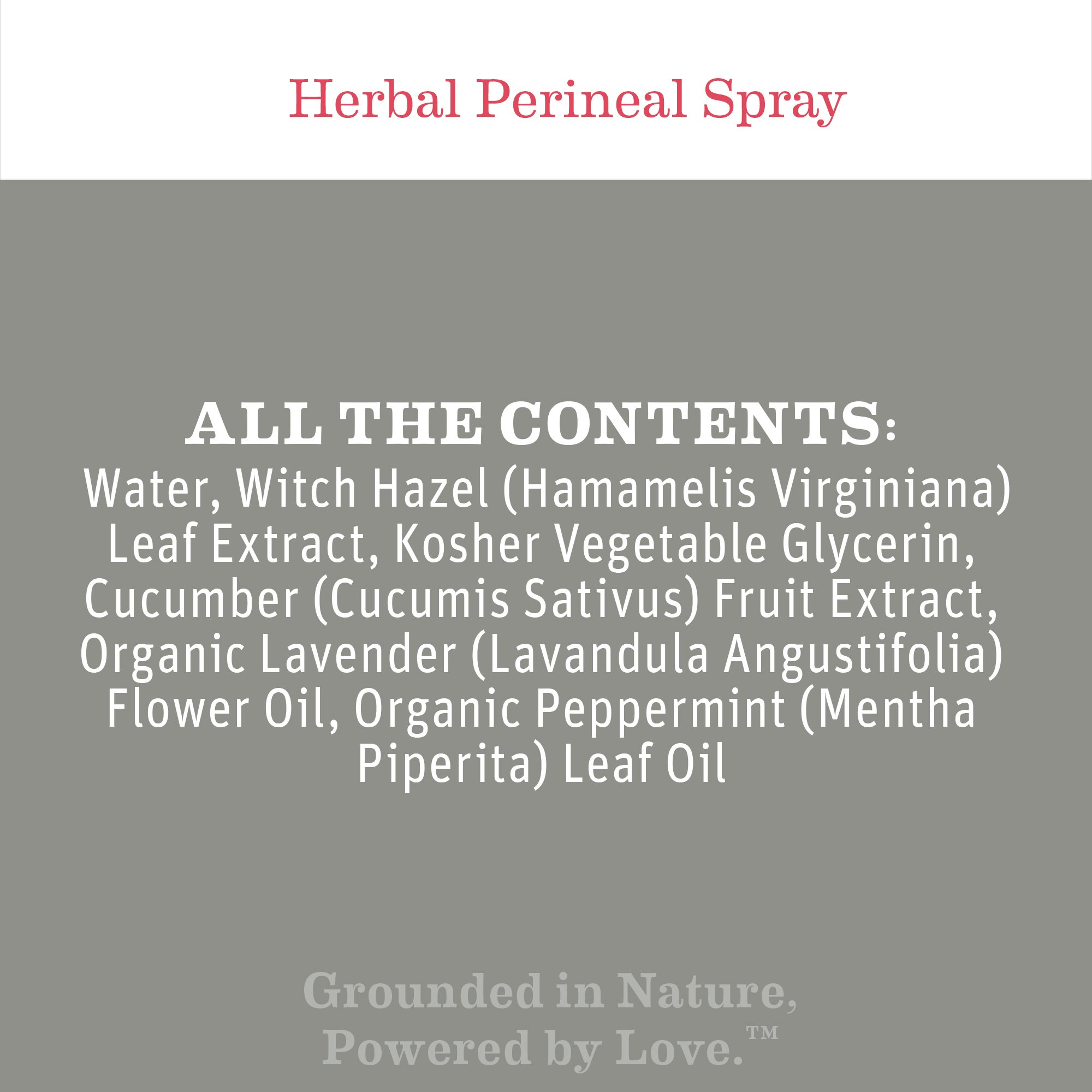 Earth Mama Herbal Perineal Spray for Pregnancy and Postpartum, 4-Fluid Ounce (2-Pack) by Earth Mama (Image #2)