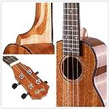 Ukulele, Concert Ukulele 23 inch, Mahogany Polished