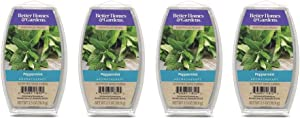 Better Homes & Gardens Aromatherapy Essential Oil Infused Wax Melts - 2.5 OZ - 4 Pack (Peppermint)