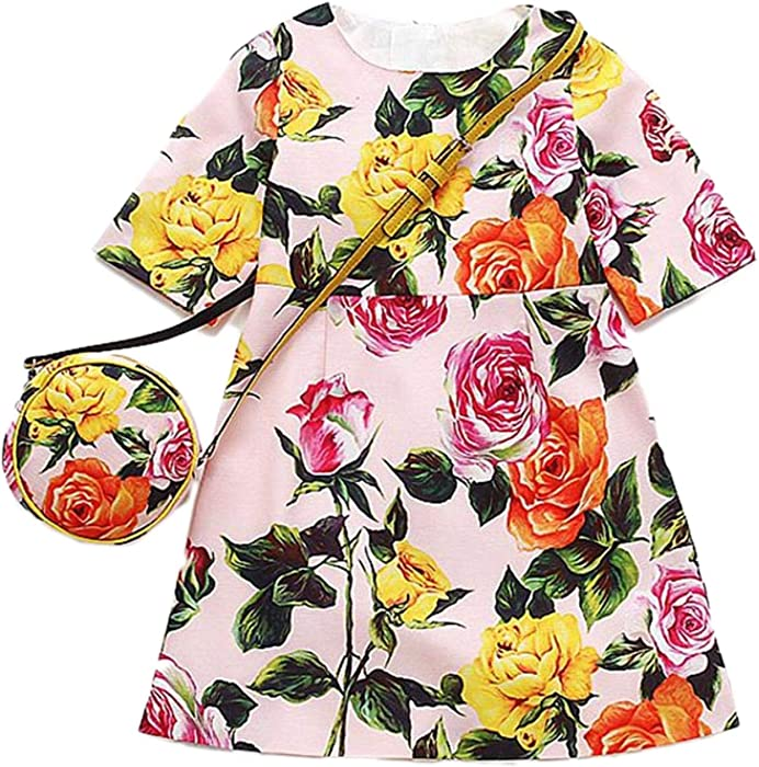 cd66d396a5 Amazon.com  ZHWZ Flower Girl Dresses Bag Elsa Princess Dress Kids ...