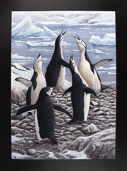 Frame USA JP668 Chorus Chinstrap Penguins-JERPAU131429 20