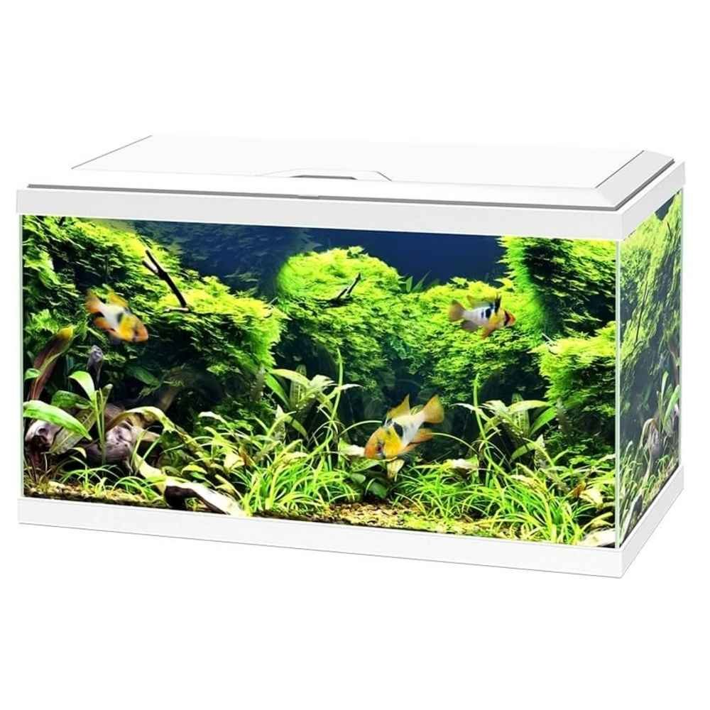 Aquarium 60 LED  pas cher