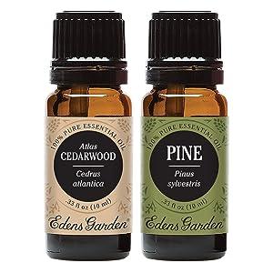 Edens Garden Atlas Cedarwood & Pine Essential Oil, 100% Pure Therapeutic Grade, 10 ml Value Pack