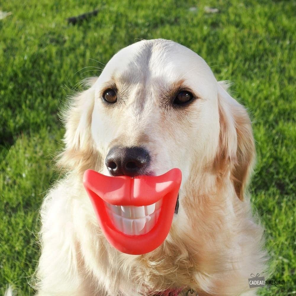 FUNNY SMILE DOG PET BALL THROW RUBBER TOY GRINNING LIPS PLAY