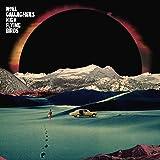 Holy Mountain (Vinyl)