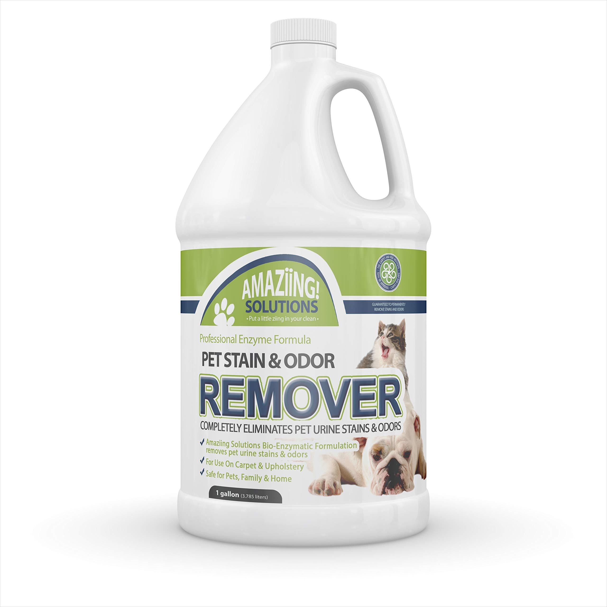 Dog Urine Smell In Wool Carpet: Dog Diarrhea On Cream Carpet
