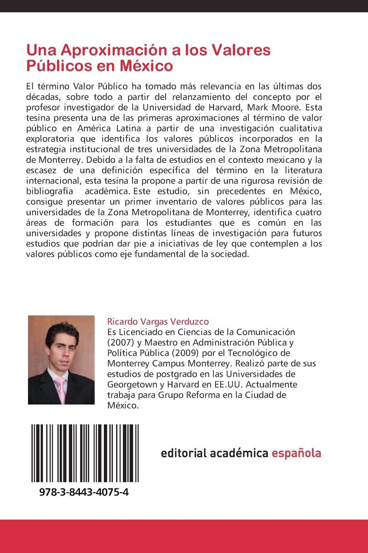 Una Aproximación a los Valores Públicos en México: Amazon.es: Vargas Verduzco Ricardo: Libros