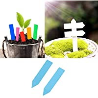 50pcs PVC Plant Flower Pot T-Type Tags Labels Markers Garden Plant Nursery Sign