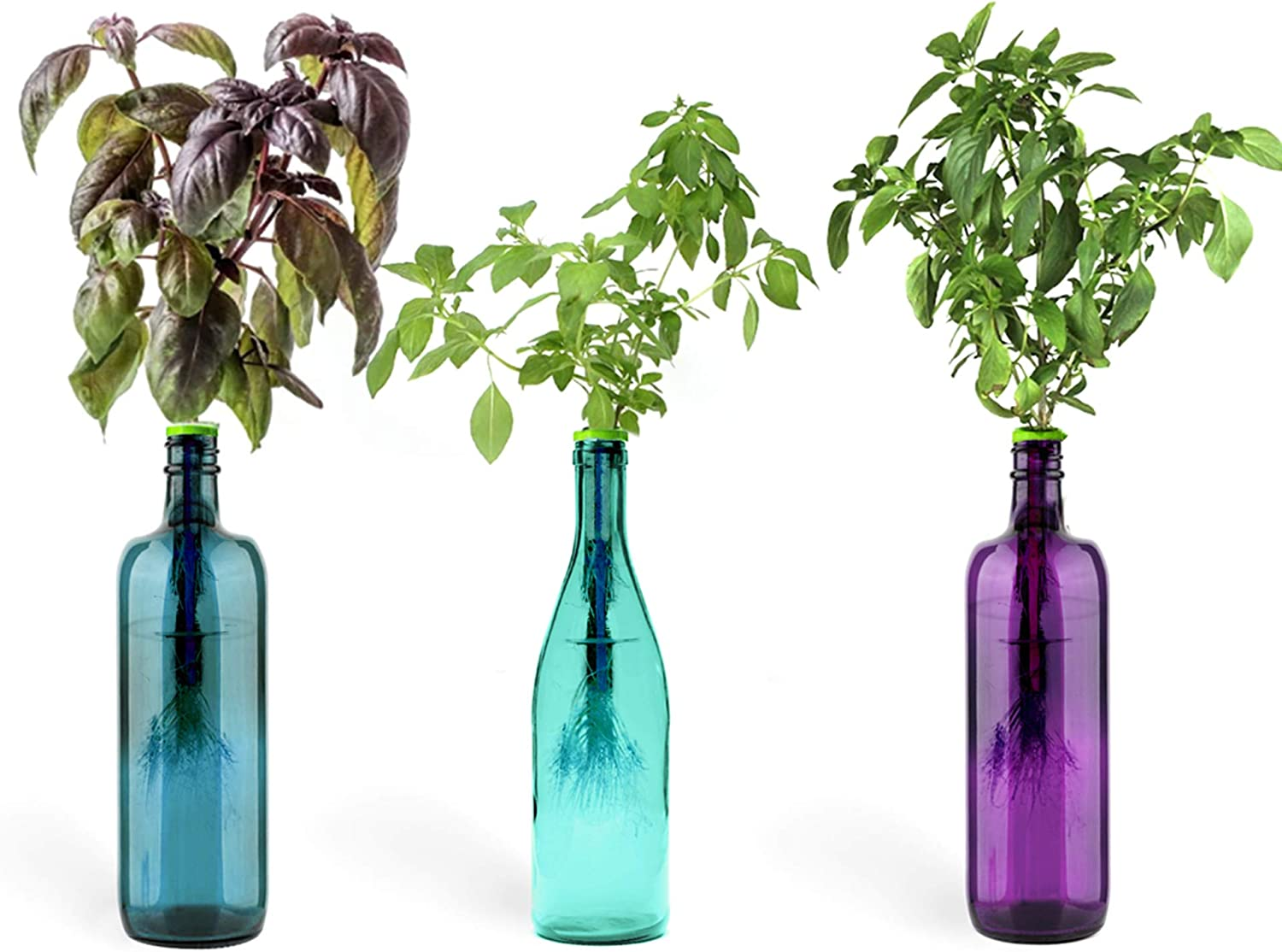 Urban Leaf - Windowsill Herb Garden Starter Kit - Self Watering Indoor Bottle Garden Kit - incl 3 Types Herb/Flower Seeds - Perfect Unique Gift for Her (or Him!)