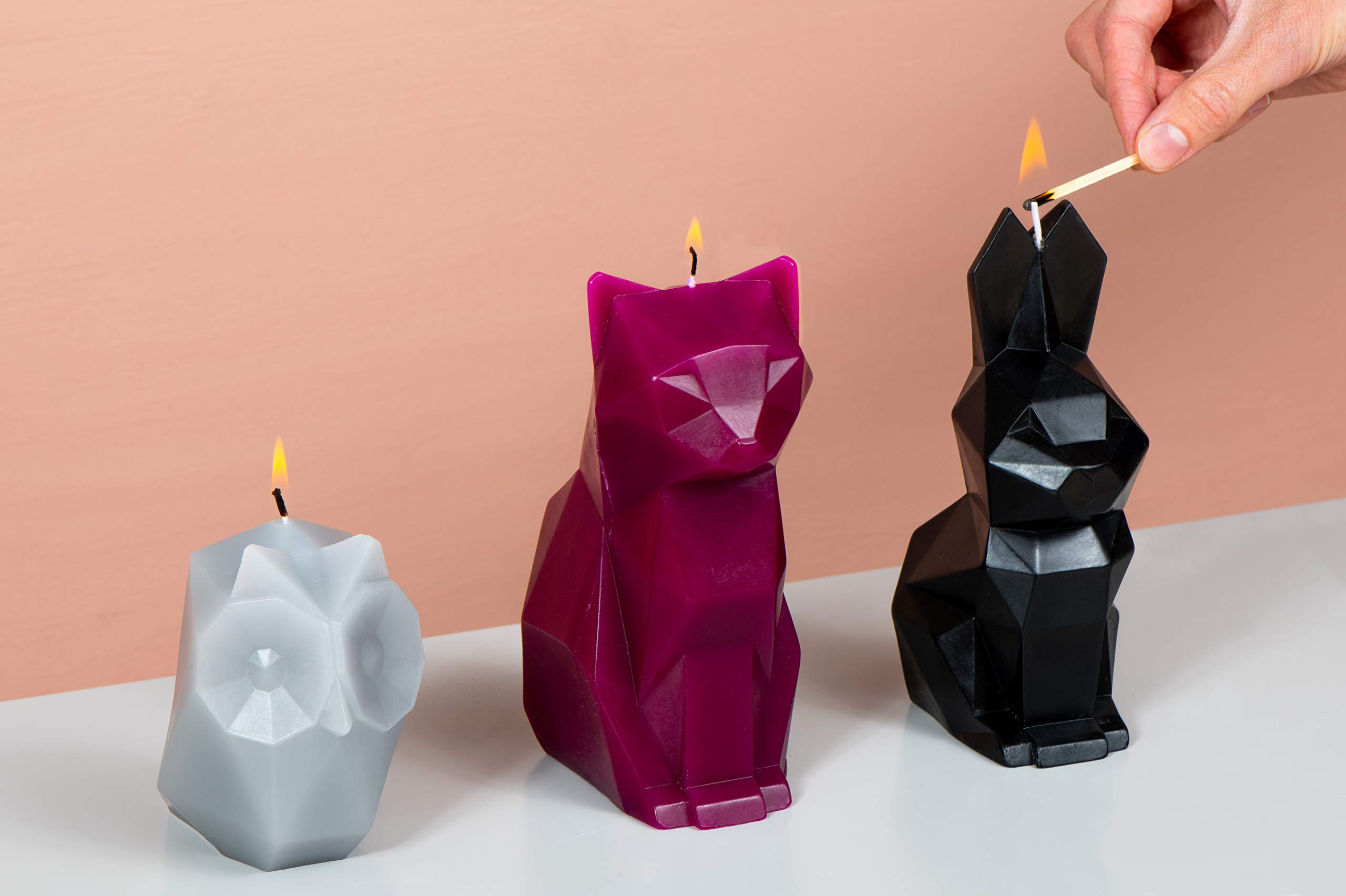 PyroPet Candles, Ugla Owl Wax Candle, Melts to Metallic Skeleton (Cool  Grey)- Buy Online in Botswana at botswana.desertcart.com. ProductId :  57645078.