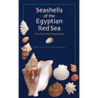 Seashells of the Egyptian Red Sea: The Illustrated Handbook