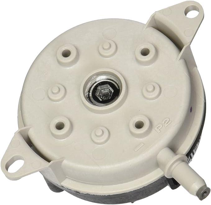 Flame Sensor Pentair Minimax NT Straight