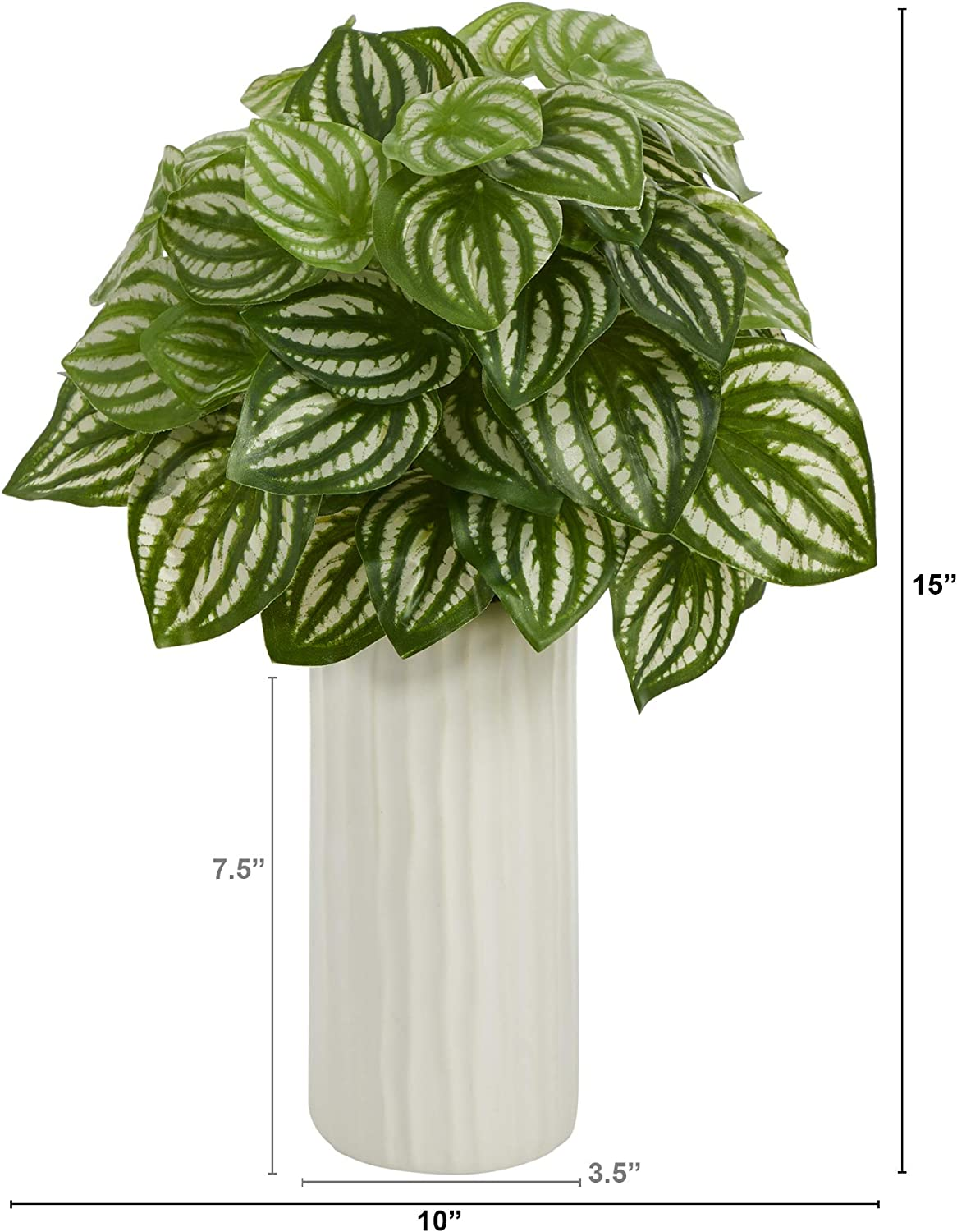 Nearly Natural 15in Watermelon Peperomia Artificial Plant In White Planter Real Touch Green Home Kitchen