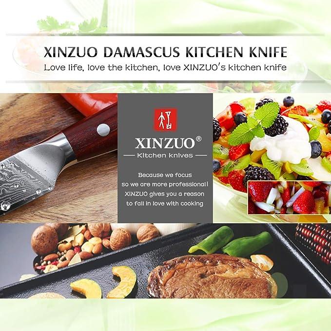 XINZUO Damasco Cuchillo de Fruta,9cm Cuchillo Vegetal Acero de Alto Carbono 67 Capas Japonés Damasco VG10 Cuchillo para Pelar Ergonómico Rosewood ...