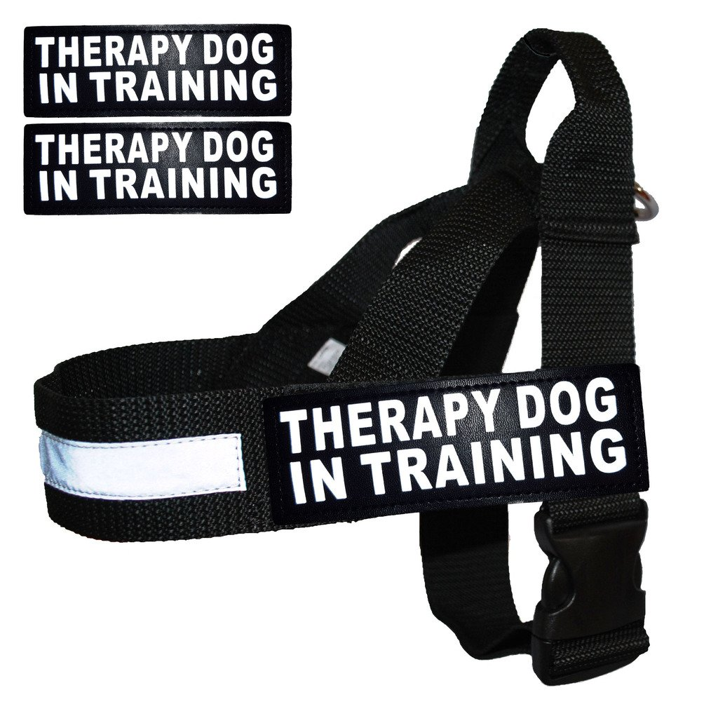 Fits Girth 20-25\ Therapy Dog In Training Nylon Harness No Pull Guide Assistance comes with 2 reflective  THERAPY DOG IN TRAINING  removable velcro patches. Please measure your dog before ordering.