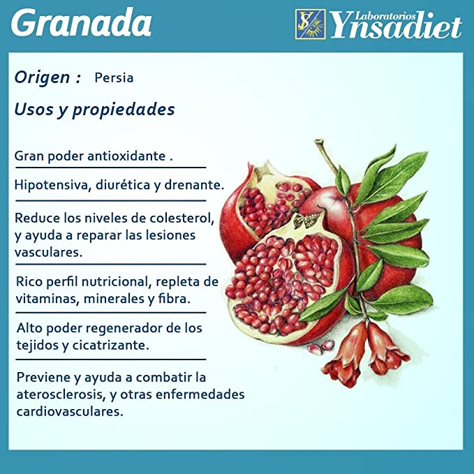GRANADA + VITAMINA C 40 Caps- NUTRIOX - YNSADIET: Amazon.es ...
