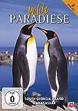 Wilde Paradiese - South Georgia Island: Paradies aus Eis / Madagaskar: Die Insel der ... [2 DVDs]