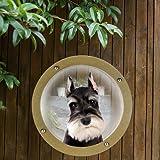 Yunt Haustier Zaunfenster Zaun Fenster für Hunde Katzen