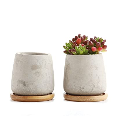 T4U 2.5 Inch Cement Serial Raised Sucuulent Cactus Plant Pots Flower Pots Planters Containers Window Boxes with Bamboo Tray Grey - Pack of 2 : Garden & Outdoor