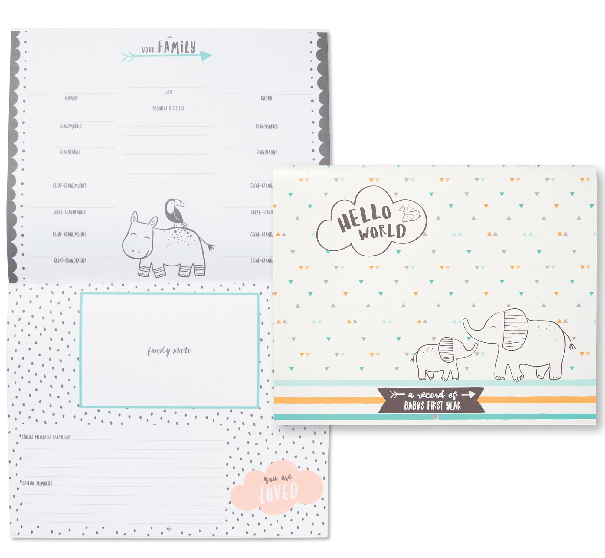 Carter's Hello World Animal Themed Baby's First Year Calendar, 11'' W x 18'' H