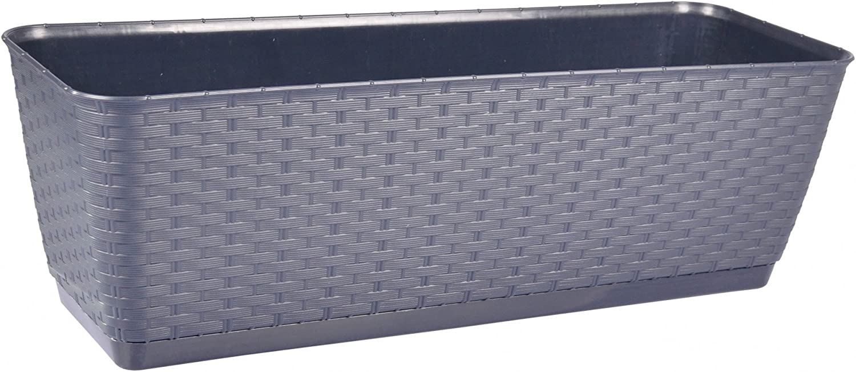 Amazon.com: Prosper Plast DRL400P-S433 Ratolla P - Maceta ...