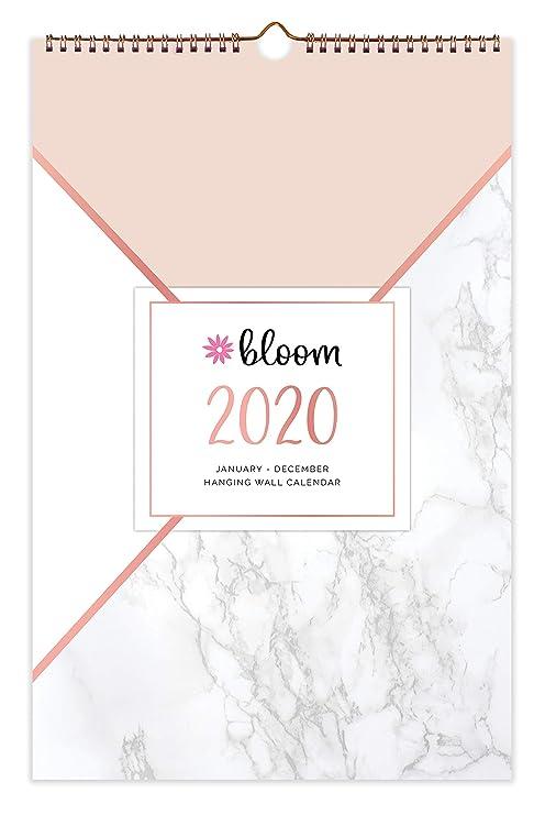 Amazon.com: Bloom diario planificadores colgante de pared ...