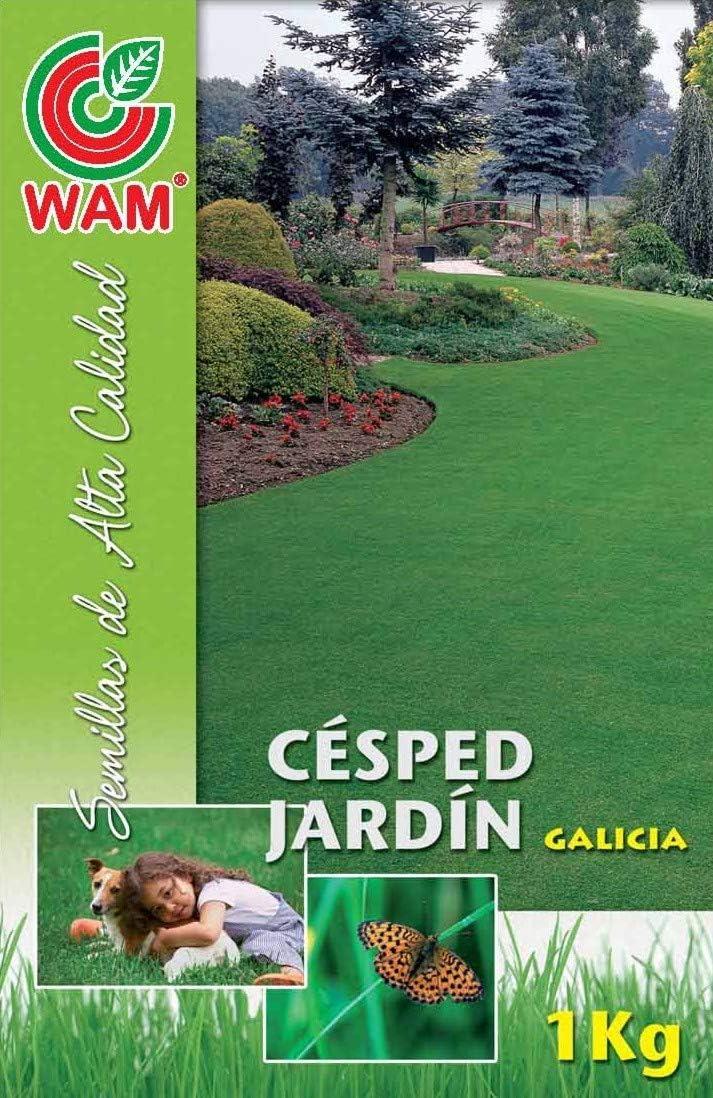 Semillas Premium de Césped Especial Jardín Galicia WAM - 1 kg: Amazon.es: Jardín