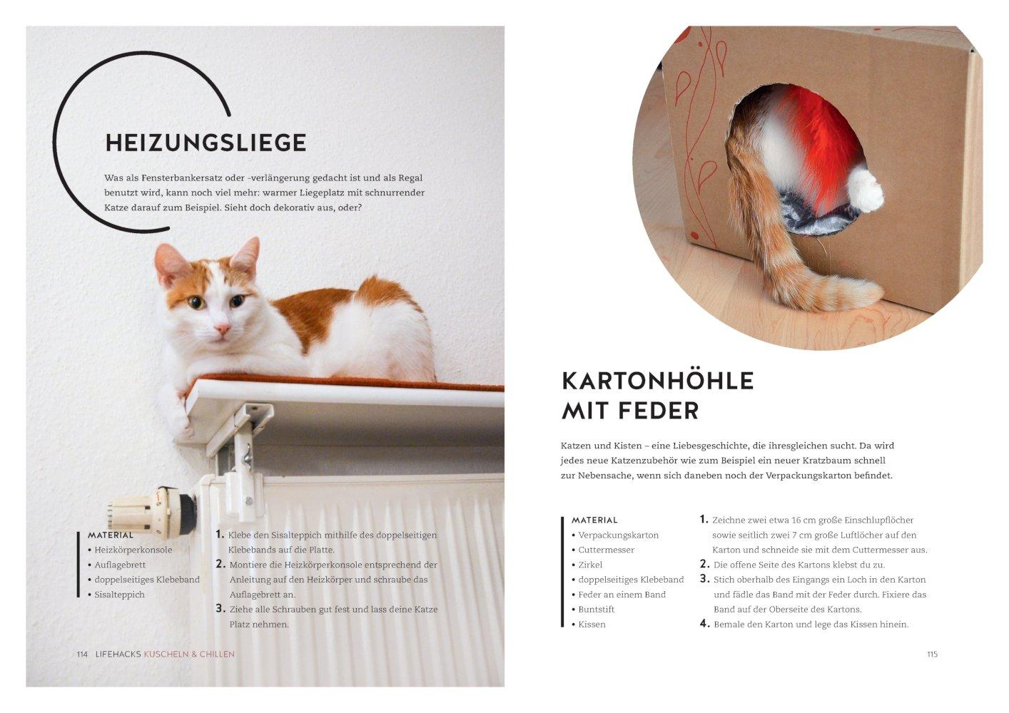 Ziemlich Innere Anatomie Einer Katze Bilder - Anatomie Ideen ...