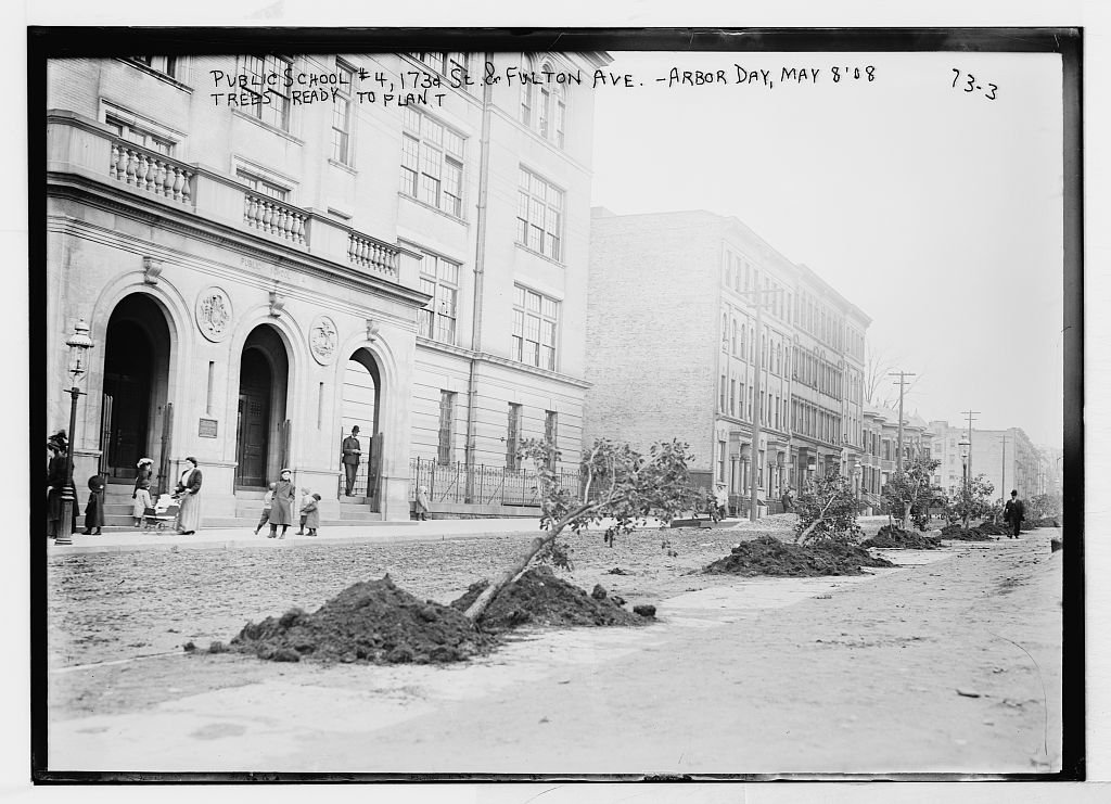 11 x 14 Vintage Photo of: Trees Ready to Plant, Arbor Day, Public School #4, 173rd St. and Fulton Ave, New York c.39576