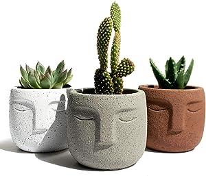 Gepege Succulent Plants Pot Set of 3, Concrete Head Planter for Home Office Desk Decoration, Modern Indoor/Outdoor Cement Statue Face Vase (3 Inch)