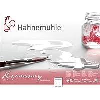 Hahnemühle 10 628 045 Hahnemühle Harmony cold pressed 30x40