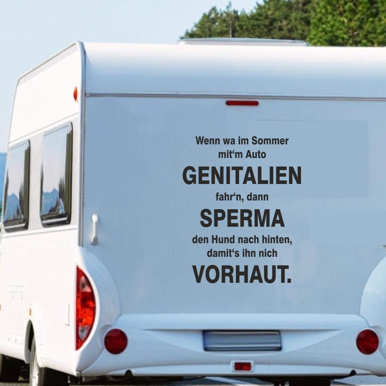 Pegatina Promotion Wohnmobil Wohnwagen Aufkleber Lustiger Spruch