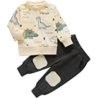Toddler Baby Boys Dinosaur Outfits Long Sleeve Sweatshirt Top Patchwork Pants 2Pcs Fall Clothes Sets