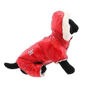 Amazon.com: Doggie Design
