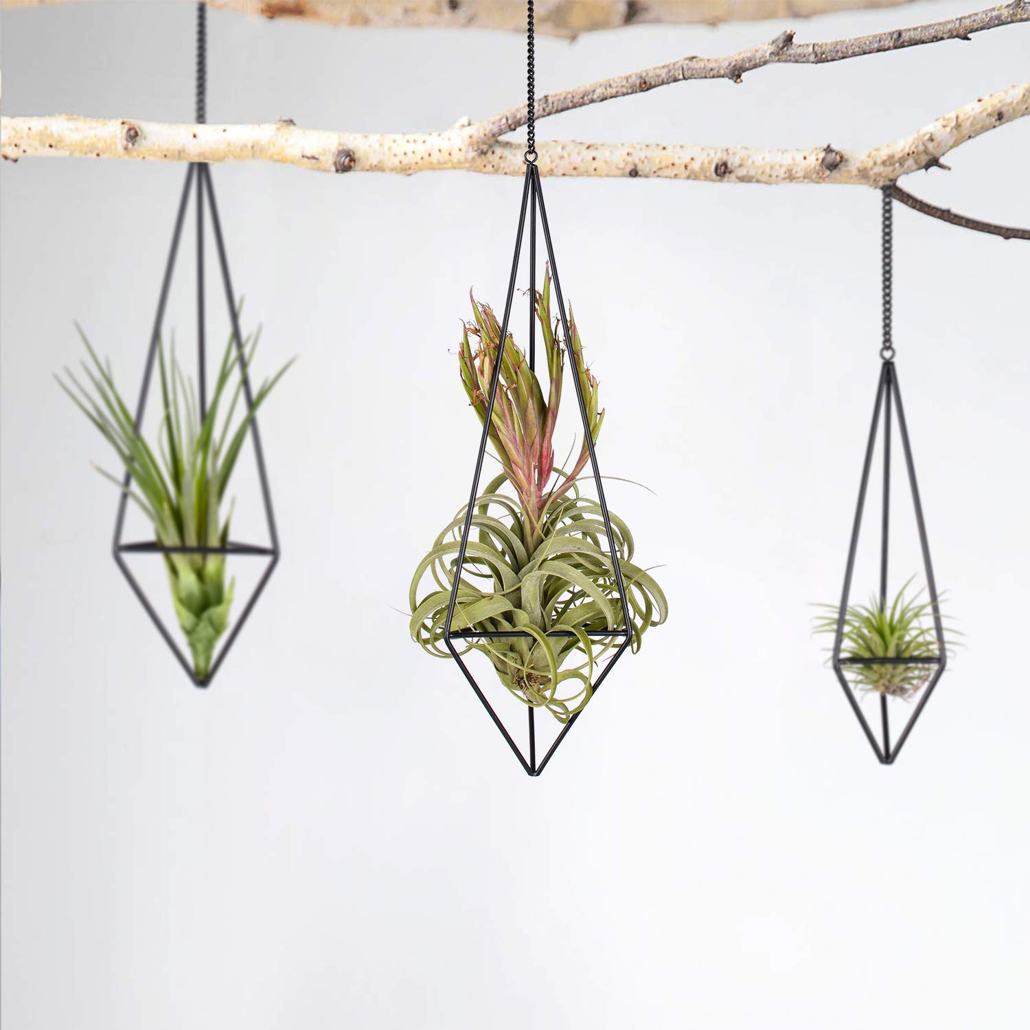 Pack 3 Black Metal Hanging Air Plant Holder, Gemometric Plant Planter Holder with Chains Home Decor, Quadrilateral Pyramid Shape Geometric Hollow Flower Pots in Mixed Sizes