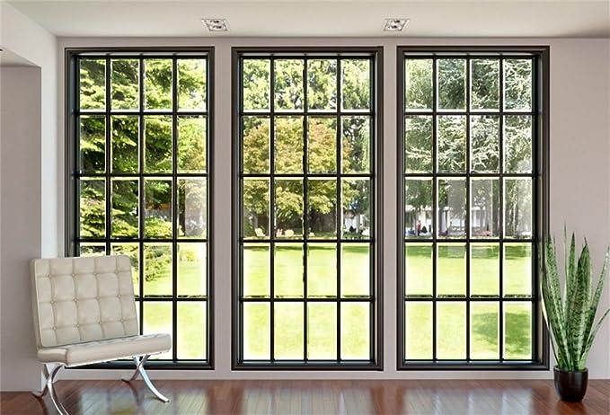 Amazon.com: CSFOTO - Fondo para el salón y el jardín, diseño ...