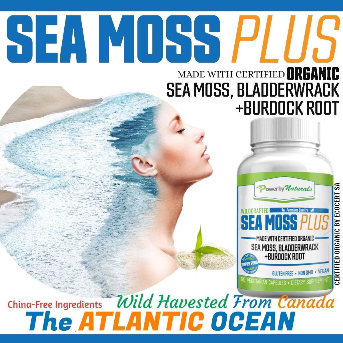 Power by Naturals – Certified Organic Sea Moss Plus – Wildcrafted Irish Sea Moss Bladderwrack Burdock Root – Pure Sea Moss Powder Supplements - No Fillers, Vegan, non-gmo - Seamoss Capsules (60 Pills): Health & Personal Care