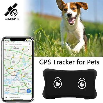 GPS Tracker para Perros y Gatos – Collar Impermeable para Mascotas Enganche para iOS/Android Sistema