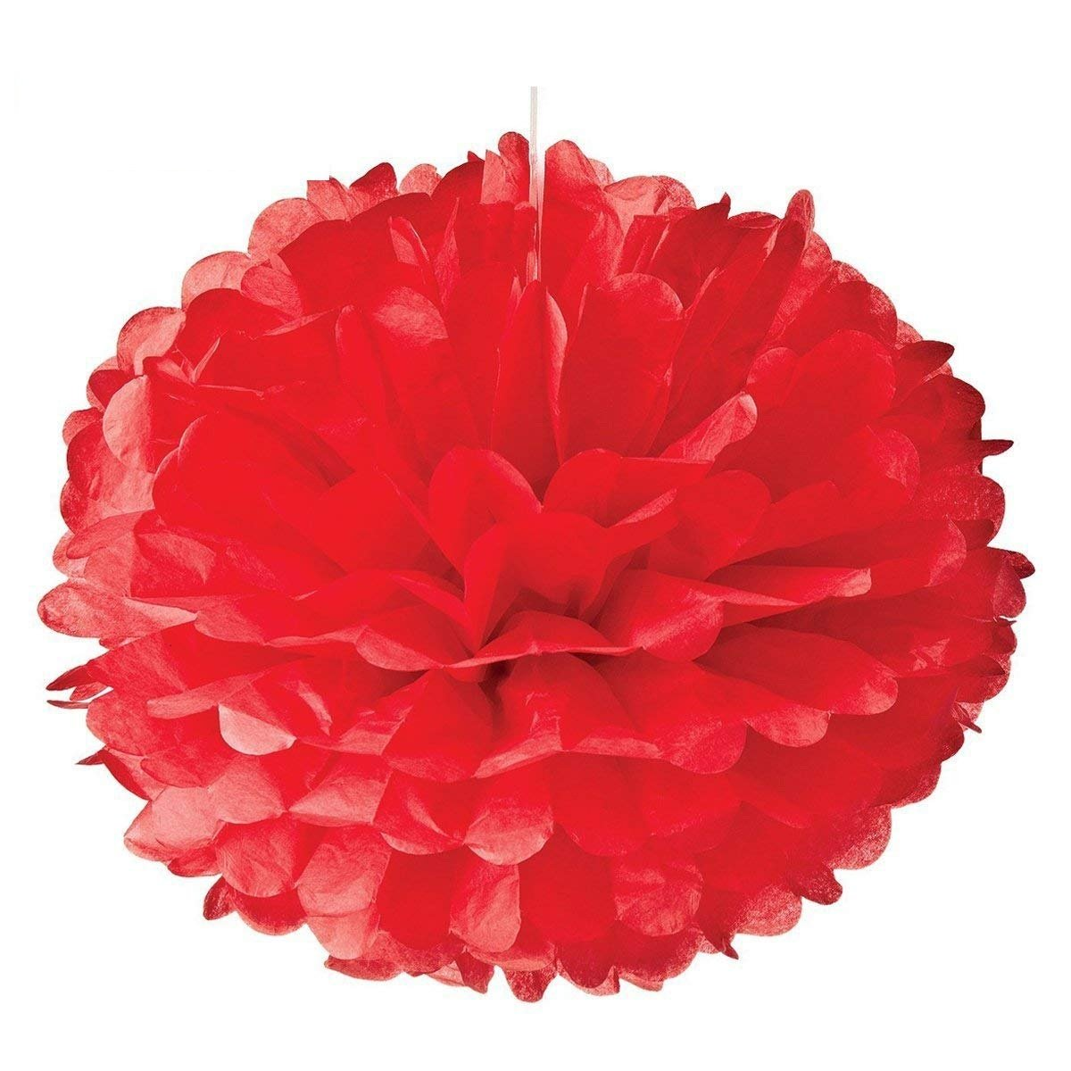 Hmxpls 10pcs Tissue Hanging Paper Pom-poms Flower Ball Wedding Party Outdoor Decoration, Premium Tissue Paper Pom Pom Flowers Craft Kit(Pink)