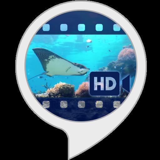 Ambient Visuals: Underwater World