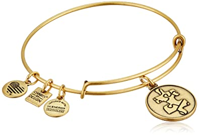 87701a5639f Alex and Ani Charity By Design Piece of The Puzzle National Autism  Association Rafaelian Gold Bangle
